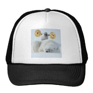 Pingouin mignon et ours blanc avec des cymbales casquettes