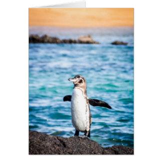 Pingouin sur l'île de Bartolome Carte De Vœux