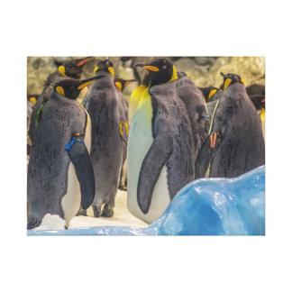 Pingouins à la copie de toile de zoo