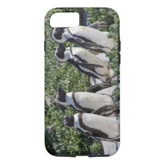 Pingouins africains, autrefois connus sous le nom coque iPhone 7