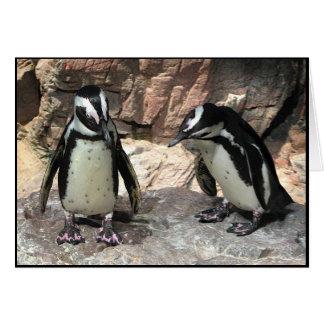 Pingouins Carte De Vœux