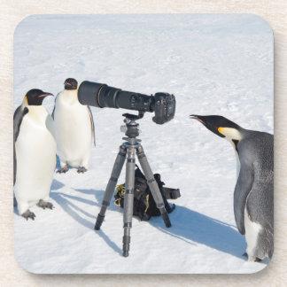 Pingouins d'empereur avec l'appareil-photo - dessous-de-verre