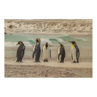 Pingouins lissant sur la plage impression sur bois