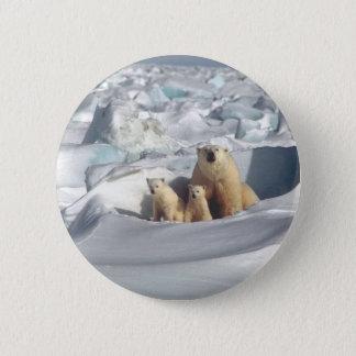 Pin's Ajoutez le SLOGAN pour sauver la glace arctique de