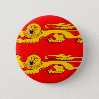 Pin's Basse Normandie, drapeau de la France