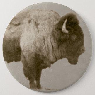 Pin's Bison américain