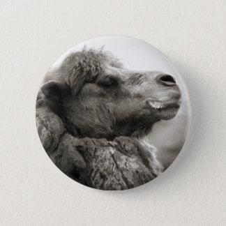 Pin's Bouton de chameau