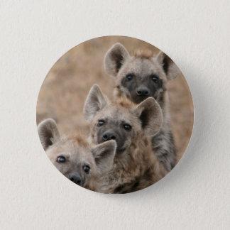 Pin's Bouton rond d'hyènes