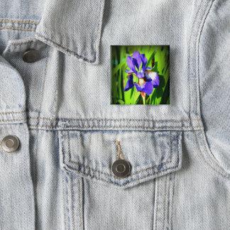 Pin's Bouton sibérien de carré d'iris