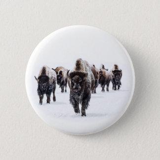 Pin's Buffalo