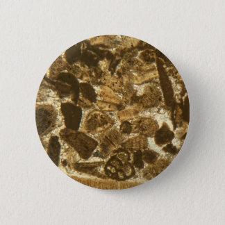 Pin's Chaux miocène sous le microscope