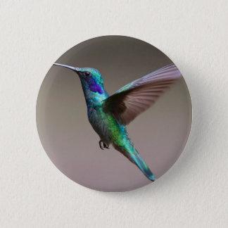 Pin's Colibri