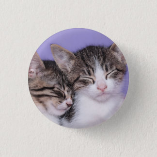 Pin's Deux chatons mignons faisant une sieste