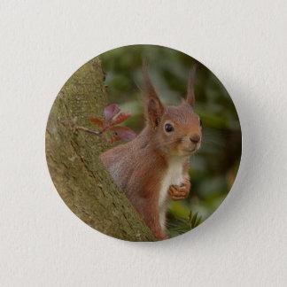 Pin's Écureuil rouge malfaisant