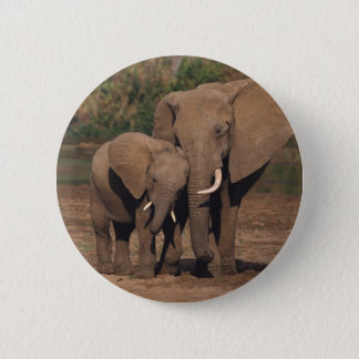 Pin's Éléphants