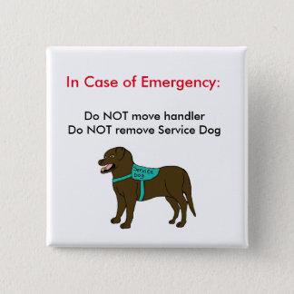 Pin's Entretenez le bouton 2 de GLACE de chien