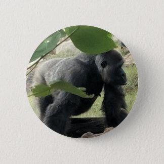 Pin's Gorille de Silverback