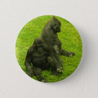 Pin's Gorilles de l'Afrique, primats, photographie