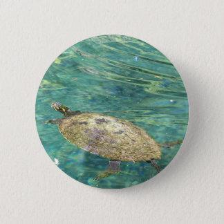 Pin's grande natation de tortue de rivière