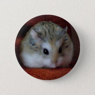 Pin's Hamster mignon sur un bouton - Hammy