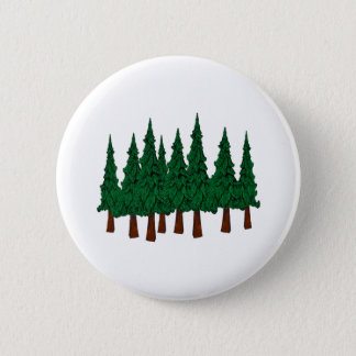 Pin's La forêt à feuillage persistant