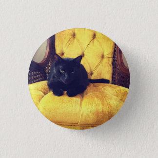 Pin's La moitié du siècle Hamilton moderne le chat