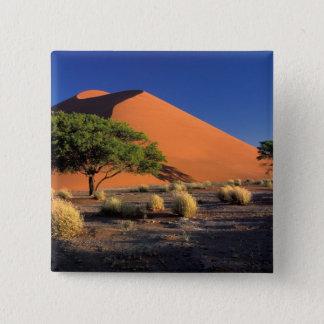 Pin's L'Afrique, Namibie, parc de Namib-Naukluff,