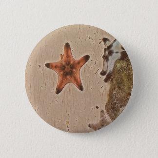 Pin's Le neutre artistique bronze des étoiles de mer sur