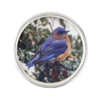 Pin's L'oiseau bleu oriental sur la glace a couvert le