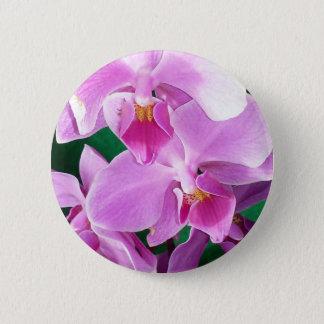 Pin's L'orchidée fleurit plan rapproché dans le rose