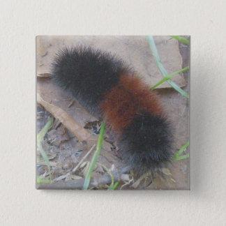 Pin's L'ours Caterpillar laineux se boutonnent