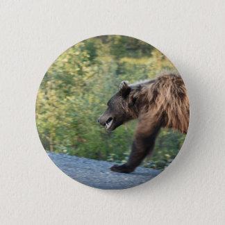 Pin's L'ours gris le Yukon, Canada attaque, des