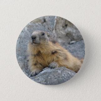 Pin's Marmotte alpine sur le roch