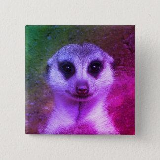 Pin's Meerkat
