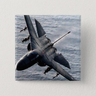 Pin's Oryctérope F-111