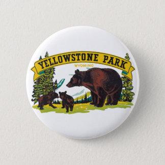 Pin's Ours de Brown vintages en parc national de
