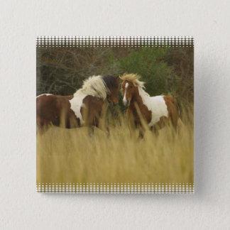 Pin's Peignez les poneys dans le bouton de carré de