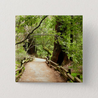 Pin's Photographie de nature du chemin II en bois de