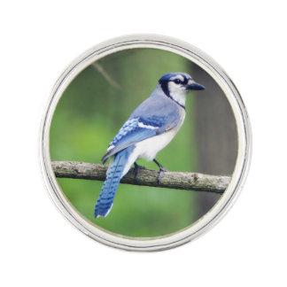 Pin's Pin de revers de geai bleu