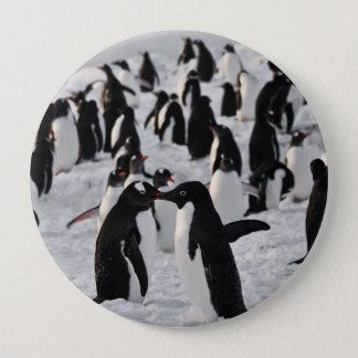 Pin's Pingouins au jeu