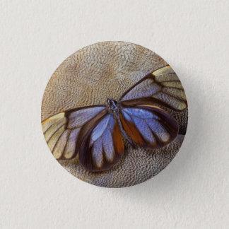 Pin's plume égyptienne d'oie de papillon de Verre-aile