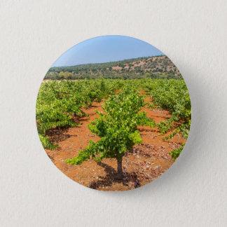 Pin's Rangées des plantes de raisin avec la montagne