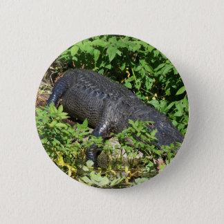 Pin's rivière d'argent de l'alligator 204a