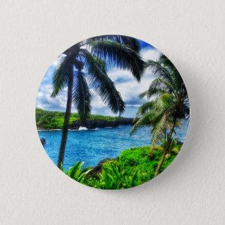 Pin's Scène du Hawaïen IMG_1122 4