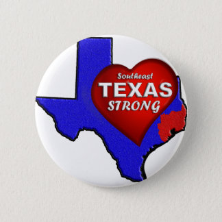 PIN'S SE LE TEXAS FORT