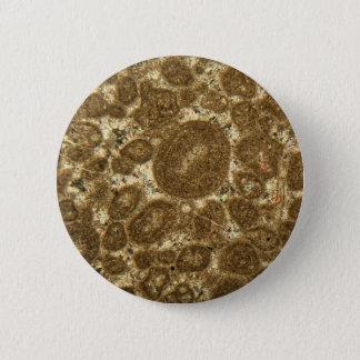 Pin's Section mince de chaux paléozoïque sous la MICR