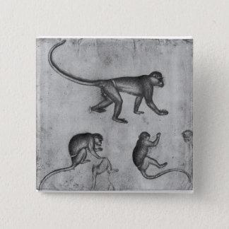 Pin's Singes, de l'album de Vallardi