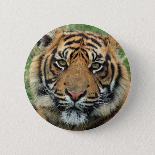 Pin's Tigre Standard : 5,7 cm Bouton rond