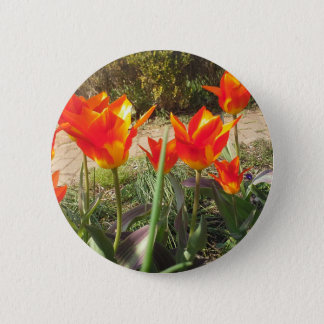 Pin's Tulipes rouges et jaunes