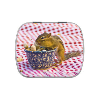 Pique-nique de tamia boites jelly belly